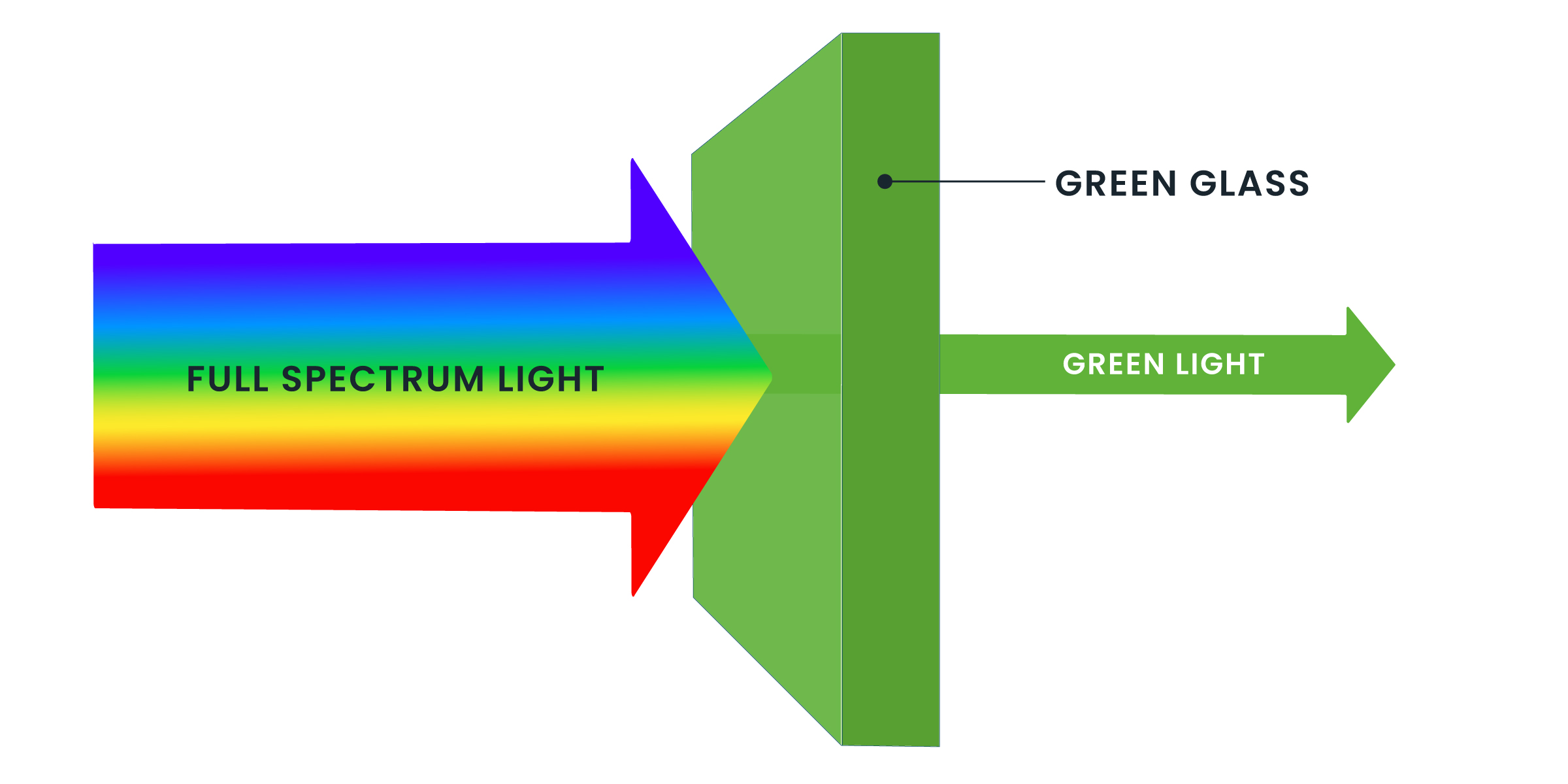 The Meaning Of Light And Color